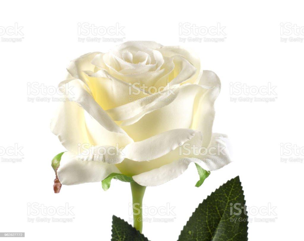 Rosa de plástico vermelha em fundo branco - Foto de stock de Amarelo royalty-free