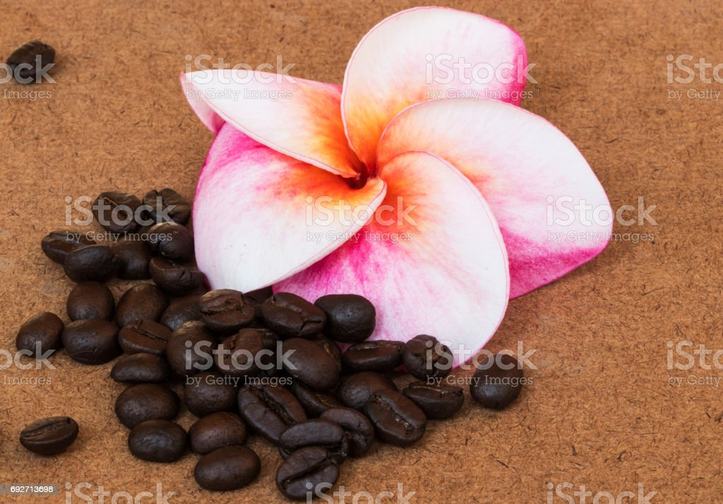 Red Plumeria flower with coffee on wood background stock photo