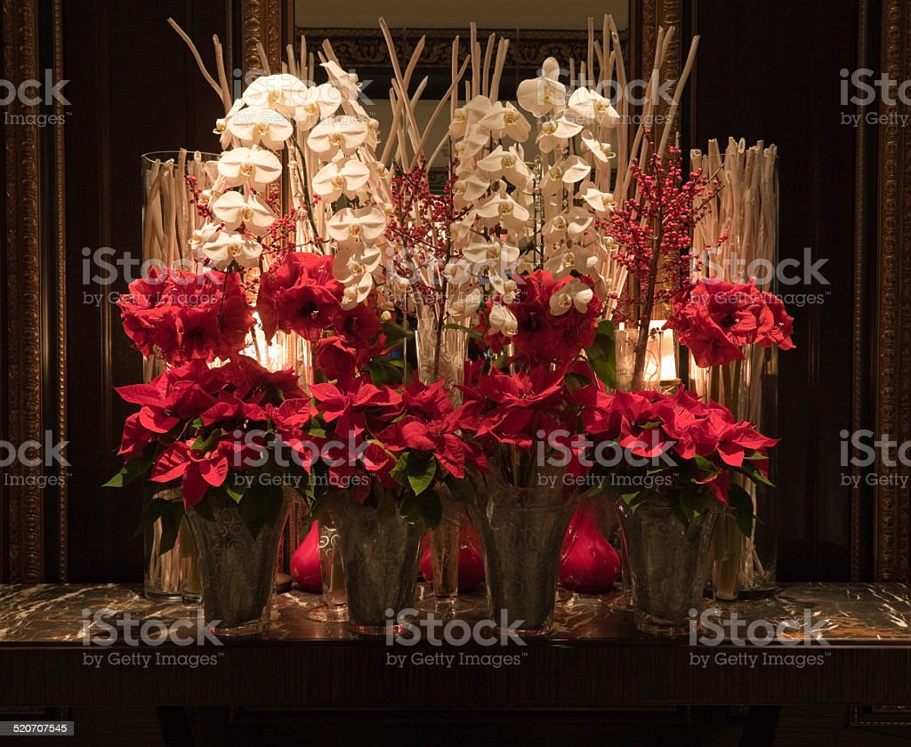Red poinsettia amaryllis and white orchid christmas flower Christmas orchid arrangements