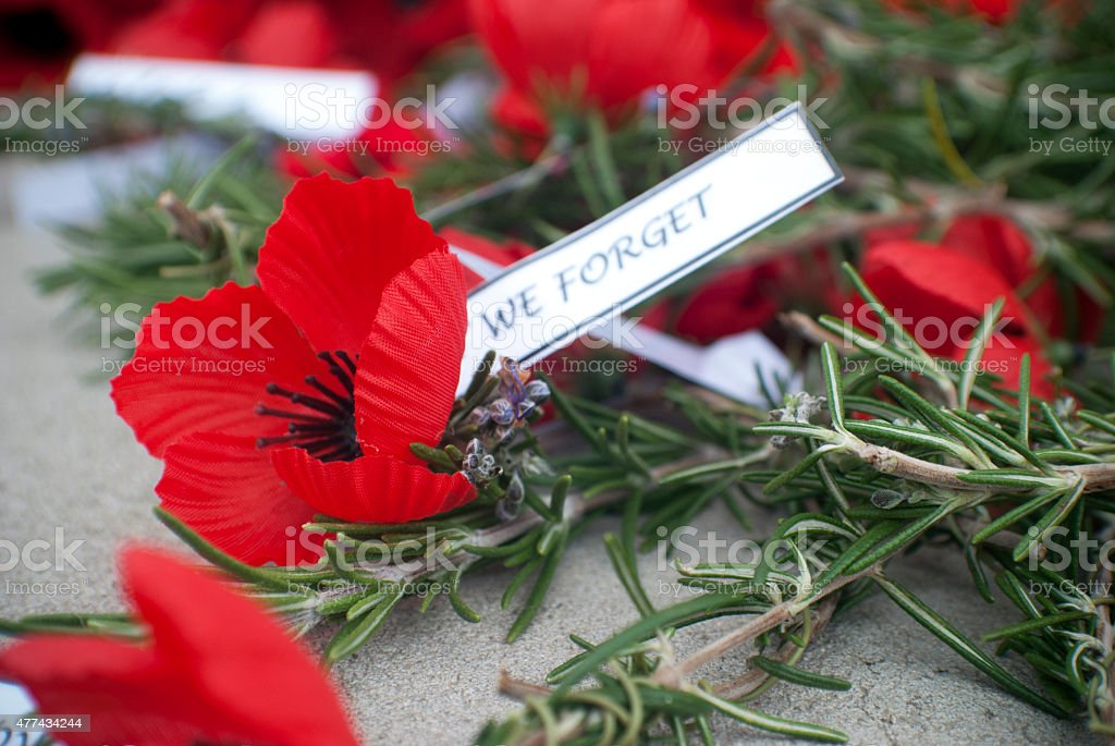 red poppies and rosemary on anzac day stock photo