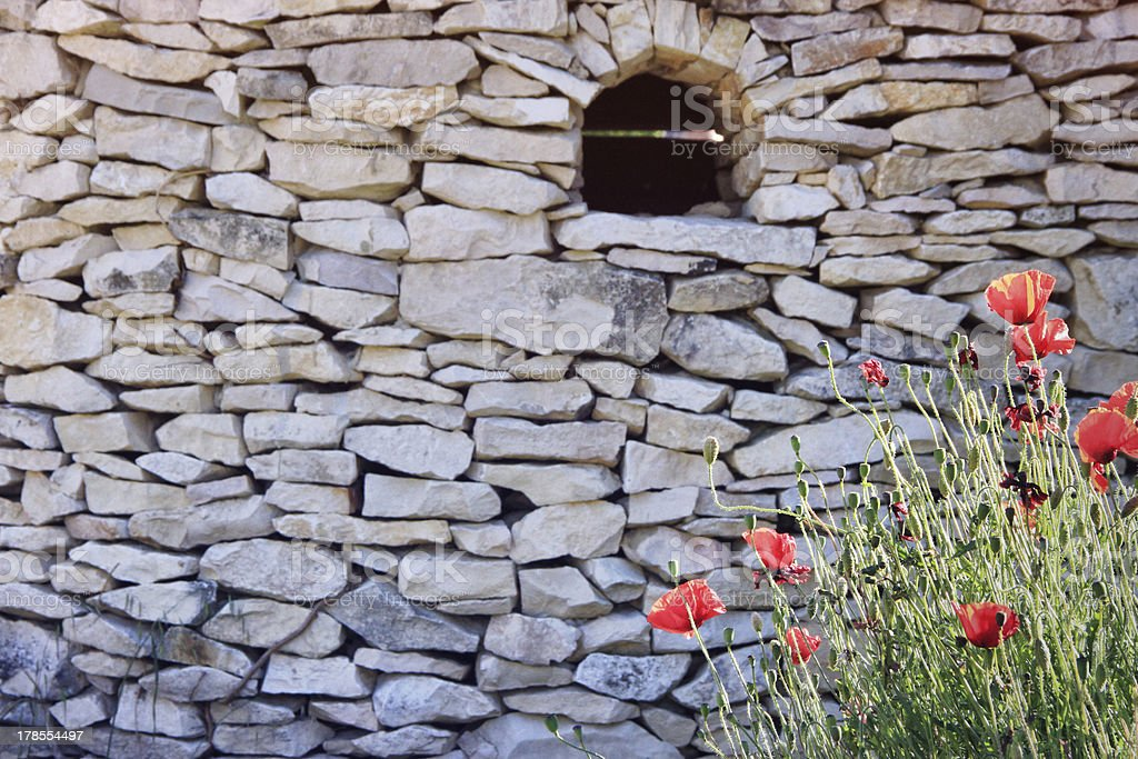 Red poppies and the wall royalty-free stock photo