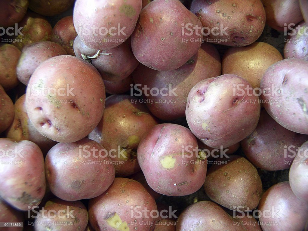 Red Potatoes royalty-free stock photo