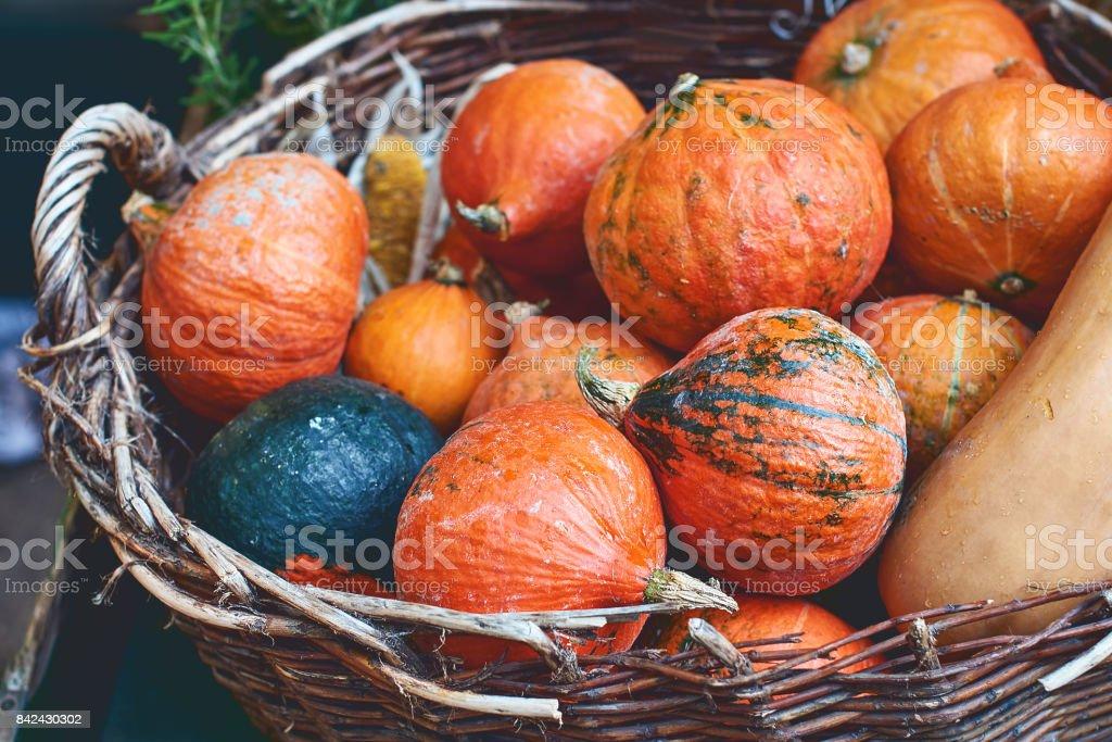 Red pumpkins in a wicker basket stock photo