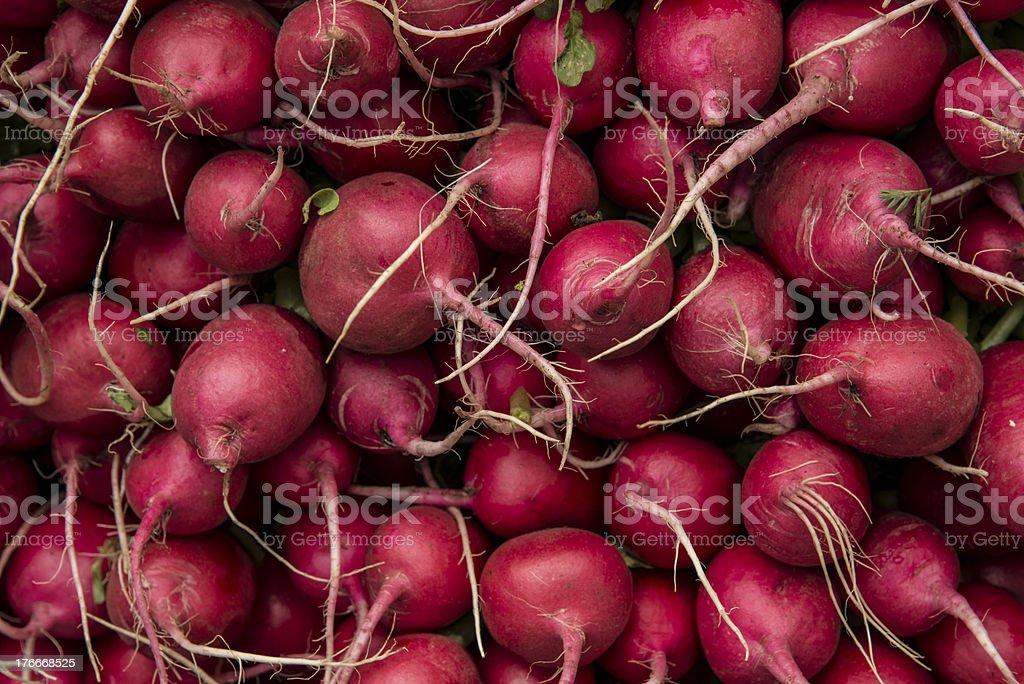 Red radishes background royalty-free stock photo