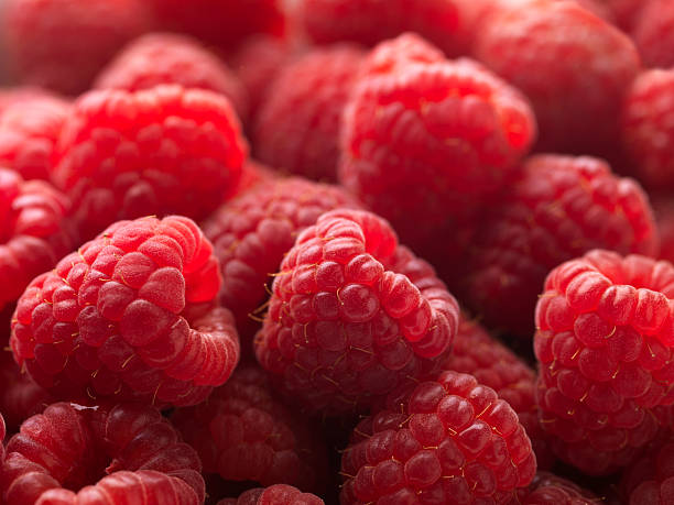Red Raspberries Macro XXL stock photo