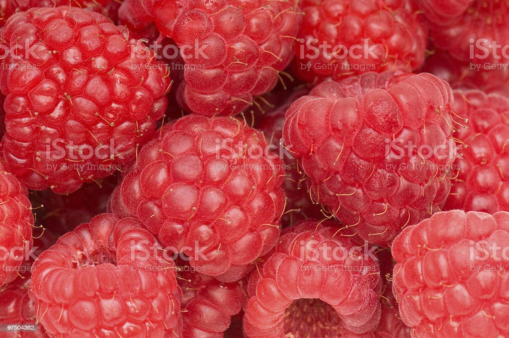 Red raspberries. royalty-free stock photo