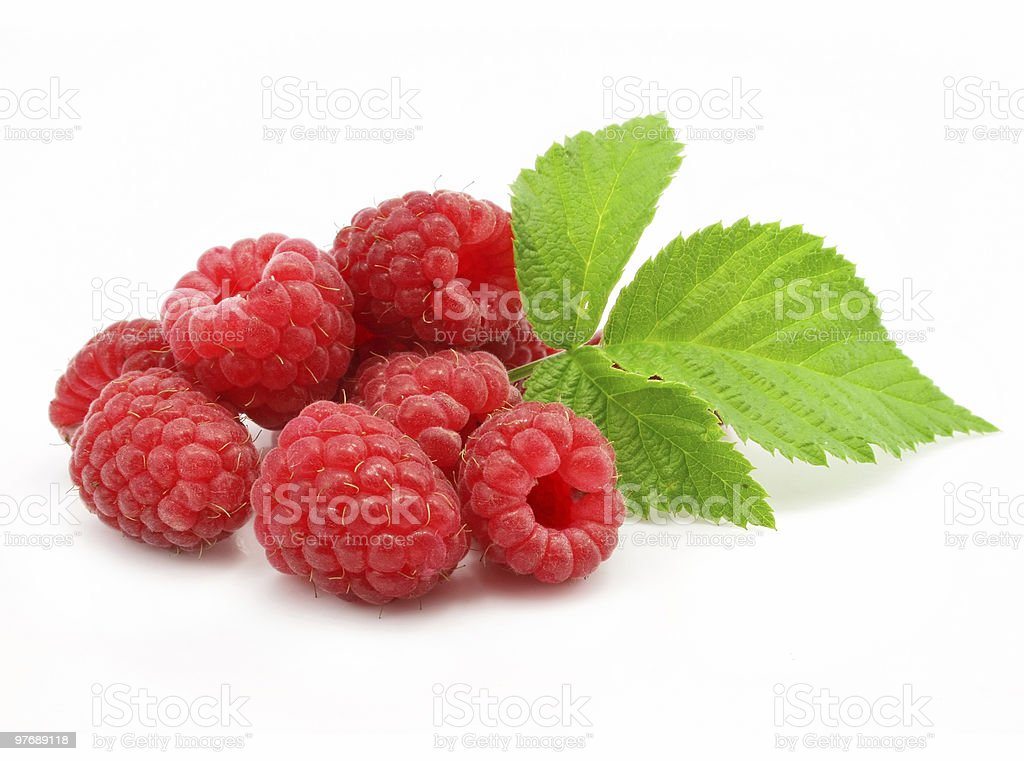 red raspberry fruits isolated stock photo