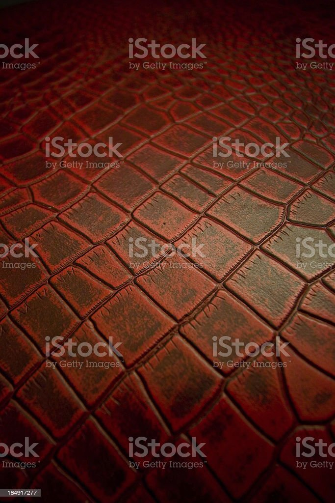 Red Reptile Skin royalty-free stock photo