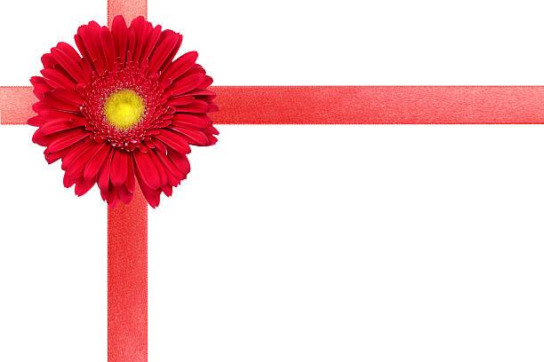Rotes Band mit Blume auf weiß-Karte – Foto