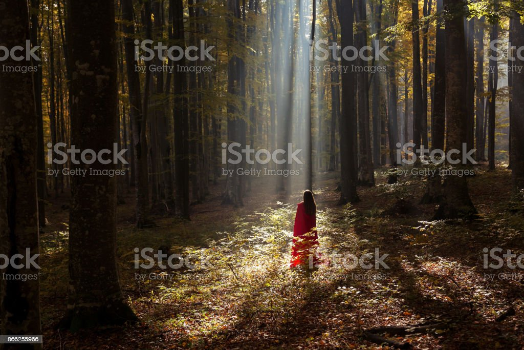 Red Riding Hood in the forest stock photo
