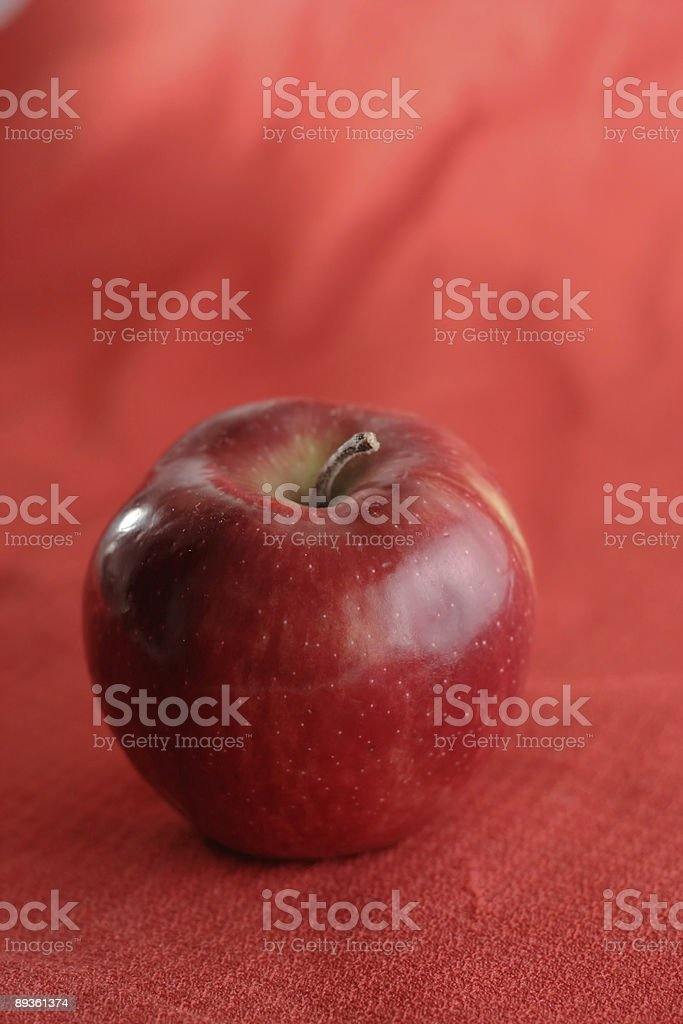 red ripe apple royaltyfri bildbanksbilder