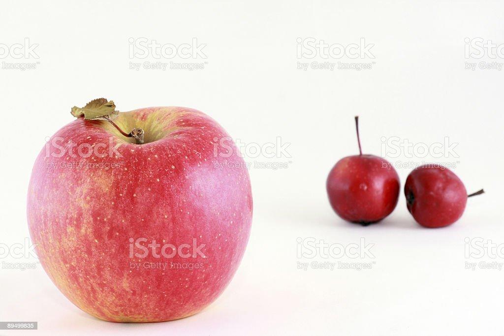 red ripe apple royalty free stockfoto