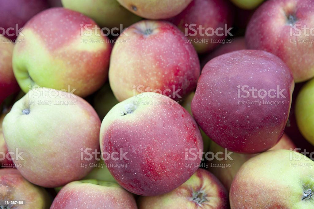 Red ripe apples background. royalty-free stock photo