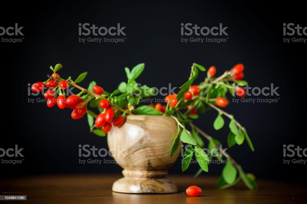 黒に分離された枝の赤熟した goji ベリー ストックフォト
