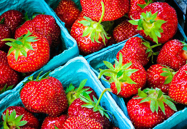 red, ripe strawberries - june stock photos and pictures