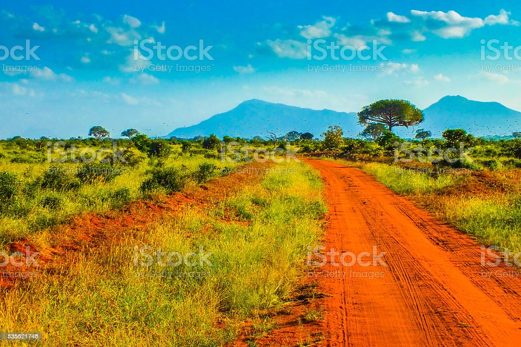 Red roads - Safari in Kenya stock photo