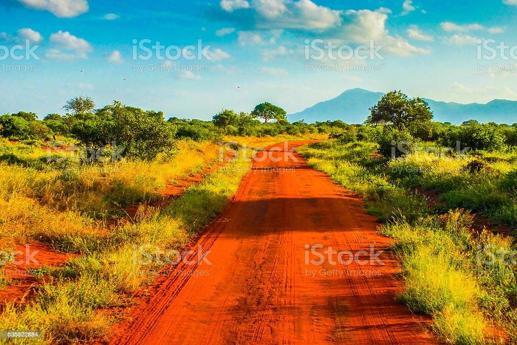 Red roads - Safari in Kenya stock photo