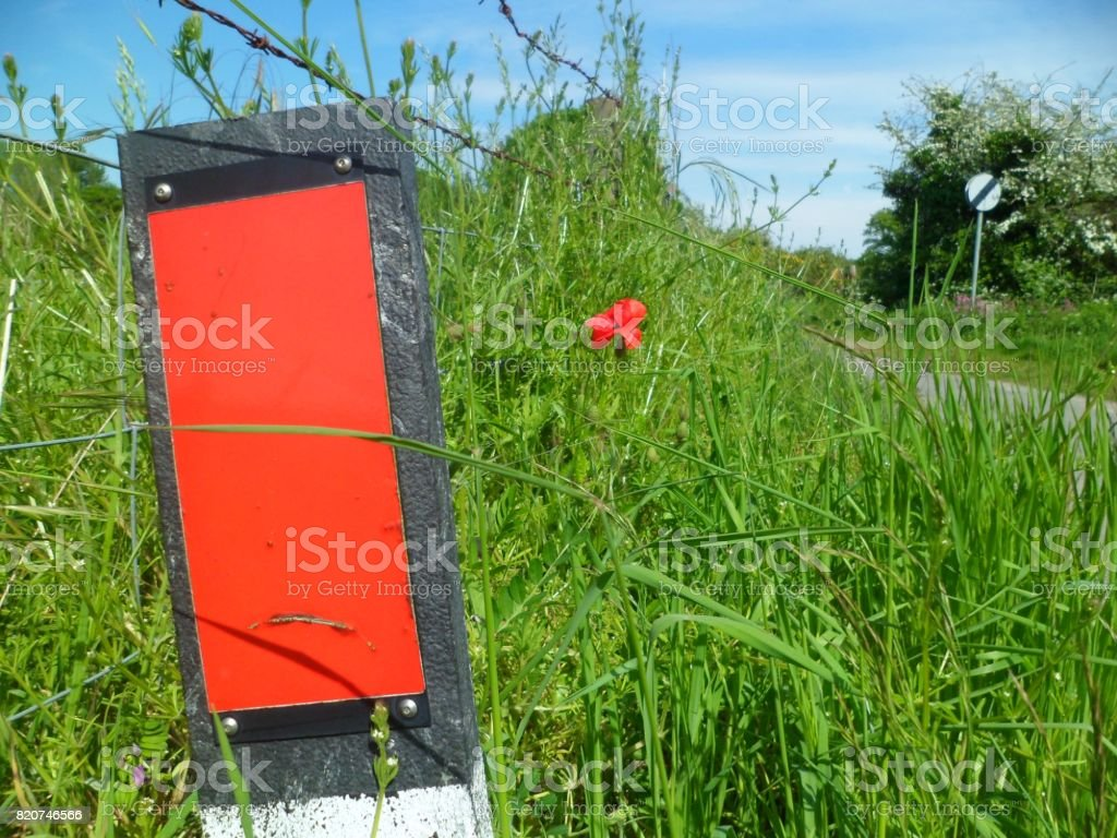 Red Roadside Reflector Verge Marker Post & Red Poppy stock photo