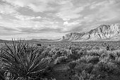 Spring morning in Red Rock Canyon National Conservation area near Las Vegas in black and white.