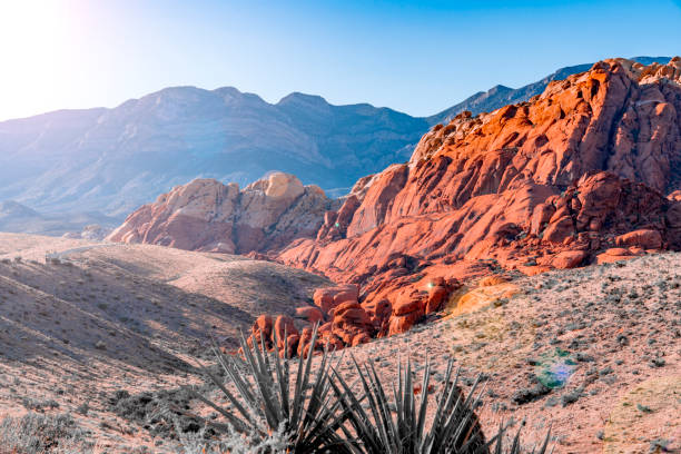 red rock canyon sunshine - red rocks stock pictures, royalty-free photos & images