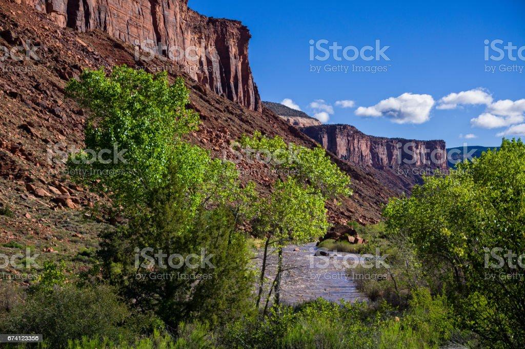 紅岩石峽谷多洛莉絲河 免版稅 stock photo