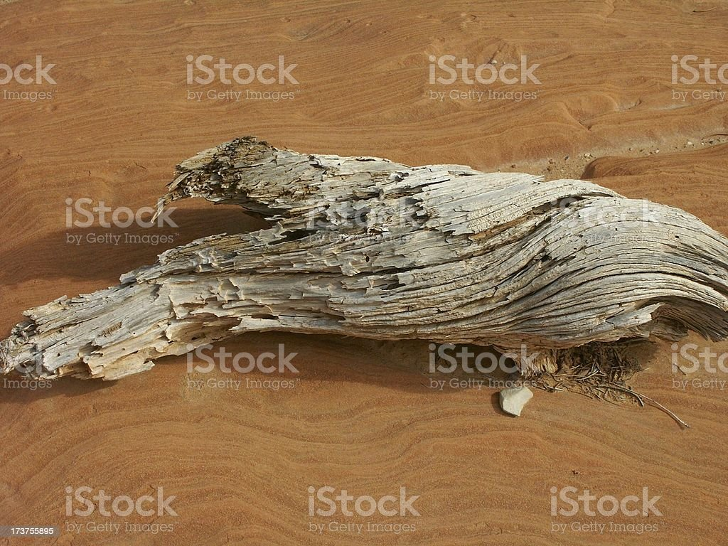 Red Rock Driftwood 2 royalty-free stock photo