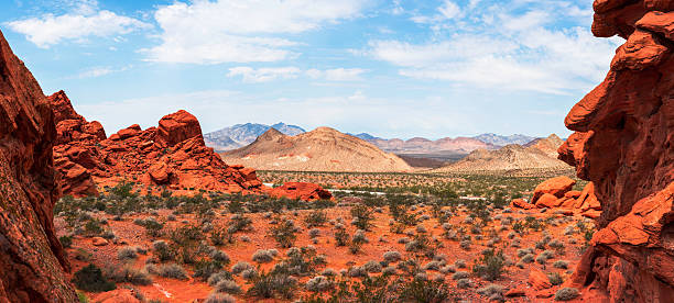 red rock - red rocks stock pictures, royalty-free photos & images