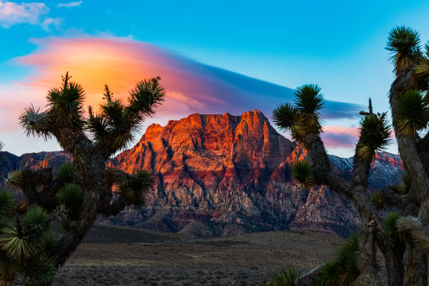 red rock sunrise - red rocks stock pictures, royalty-free photos & images