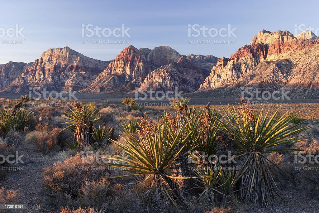 Red Rocks Morning royalty-free stock photo