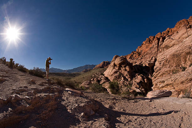 Red Rocks Safari stock photo