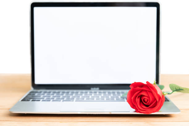 Red rose and laptop mockup on white picture id1093556164?b=1&k=6&m=1093556164&s=612x612&w=0&h=upvw1tai1vkar6dbknrwkntplktpiel wp5rzhzwma8=