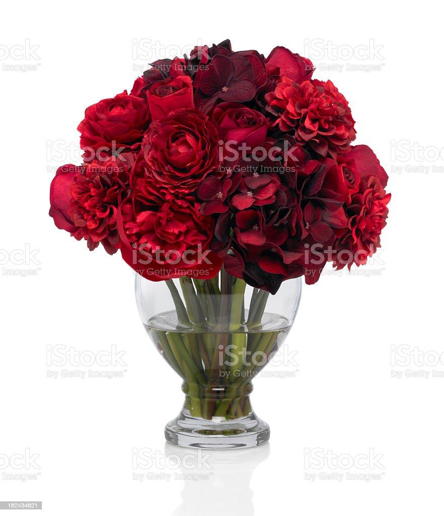 Pivoine Rose rouge et Bouquet sur fond blanc - Photo