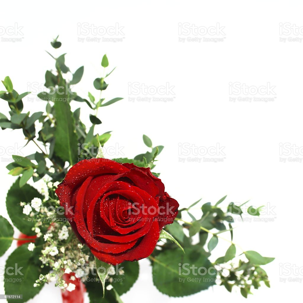 arrangement de rose rouge photo libre de droits
