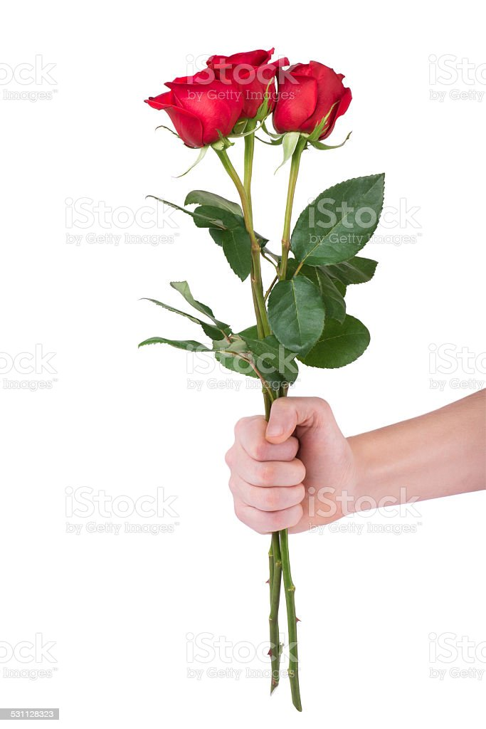 Red Rose Bouquet Flower In Hand Men Isolated Clipping Path