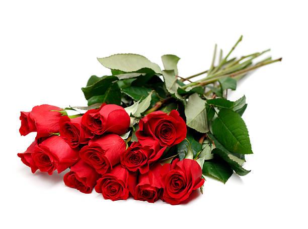 Red rose bouquet picture id182354496?b=1&k=6&m=182354496&s=612x612&w=0&h=wsvn9r49 4ka5mw1ymb7  byfk9lj3yqbhnnpsfxhky=