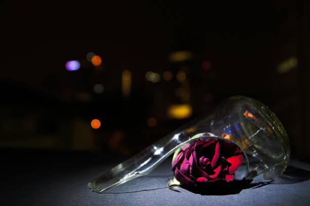 Red Rose Broken Glass Night Bokeh stock photo