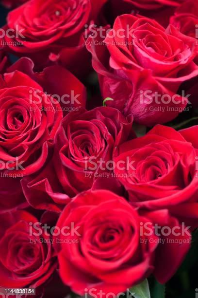 Red rose flower picture id1144838154?b=1&k=6&m=1144838154&s=612x612&h=mzpyzgvifbdhy8 4niw3vpvjaufzo8h9bvhioyt2 pq=