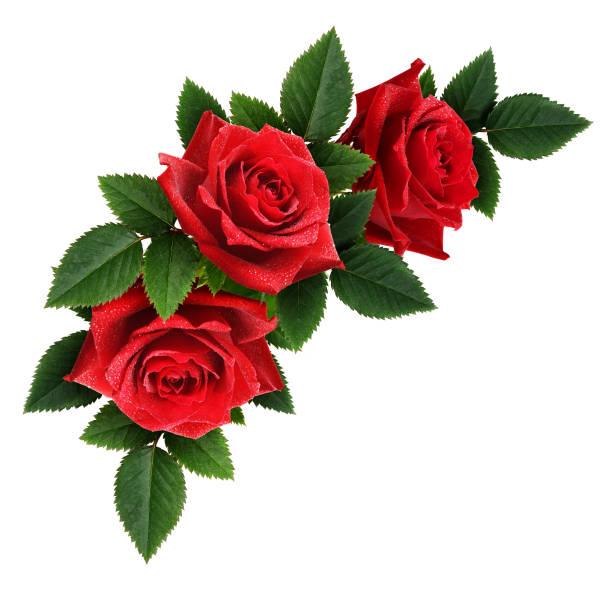 Royalty Free Flower Arrangement Flower Bouquet Corner Pictures ...