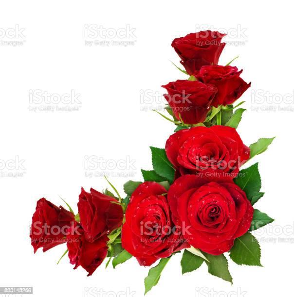 Red rose flowers corner arrangement picture id833145256?b=1&k=6&m=833145256&s=612x612&h=l6lewrzocyaadgq5b0uzg8knaqfyf9k z7wv v9duzo=