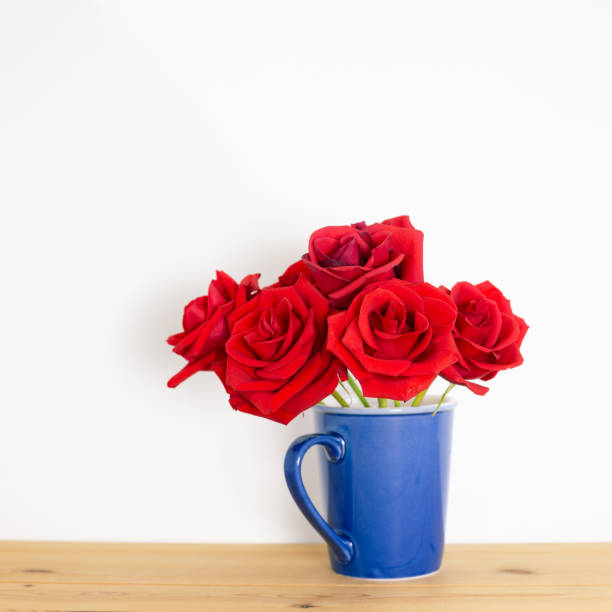 Red rose flowers in ceramic cup on wooden table with white background picture id1256939240?b=1&k=6&m=1256939240&s=612x612&w=0&h=gajqhyyqmpvrshrvi5hcjazephrqdnhoor8zl2u cty=