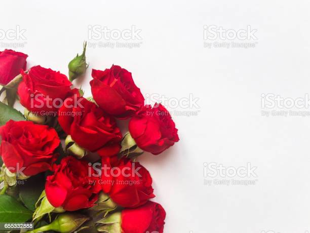 Red rose flowers isolated on white background flat lay top view picture id655332888?b=1&k=6&m=655332888&s=612x612&h=m ym6si1lgbgdgxyr8d4rzwowxmivp6s17h58fhkpri=