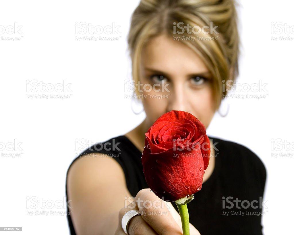 Rosas rojas para usted foto de stock libre de derechos