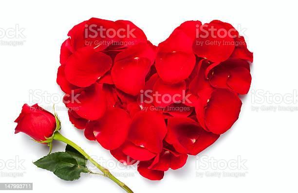 Red rose heart picture id147993711?b=1&k=6&m=147993711&s=612x612&h=i 0g6mussihaezyn50 jiq1bdsfmob c1yp3ie14hpw=