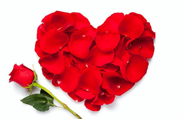 Red rose heart picture id147993711?b=1&k=6&m=147993711&s=612x612&w=0&h=tcxzivvkthpgwdsfozowgufagleciclflunfwm c7yu=