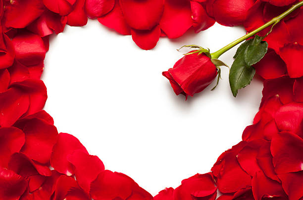 Red rose heart picture id148298309?b=1&k=6&m=148298309&s=612x612&w=0&h=9pkau5lrqglb7emknh8r2zeo8ply7d pikct3x6wzh8=