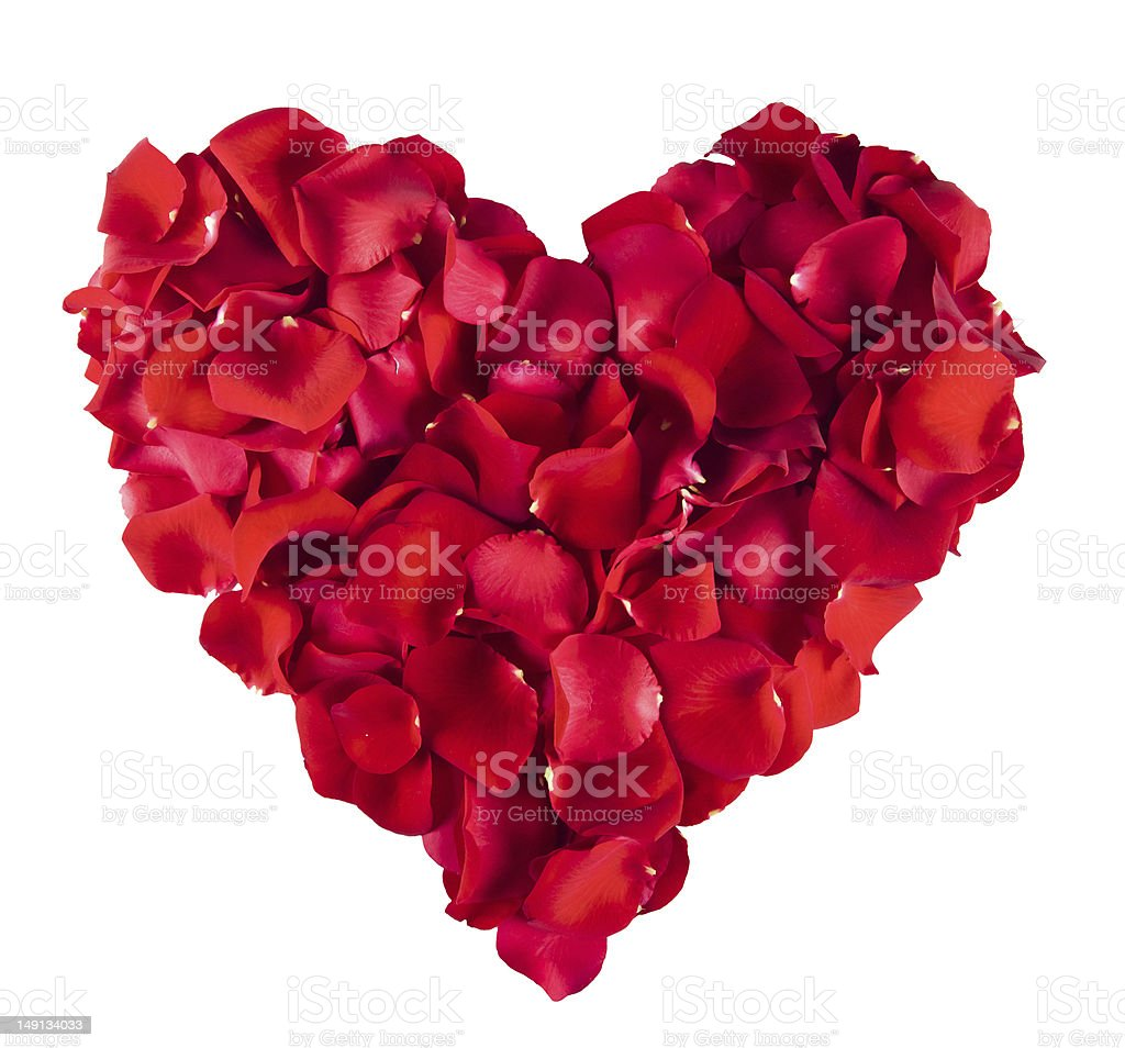 Red Rose heart stock photo