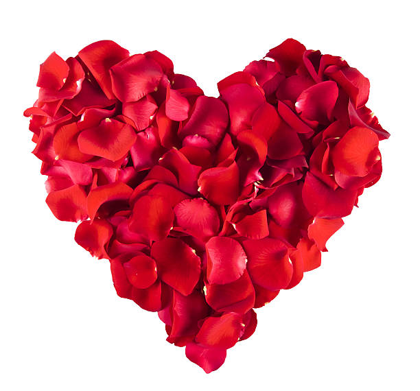red rose heart - rose petals stock pictures, royalty-free photos & images