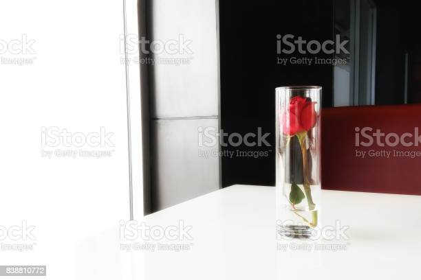 Red rose in a glass love concept picture id838810772?b=1&k=6&m=838810772&s=612x612&h=nfif8goqahkbpxkcditj5 gii6we98ijut8gbqyqhmc=