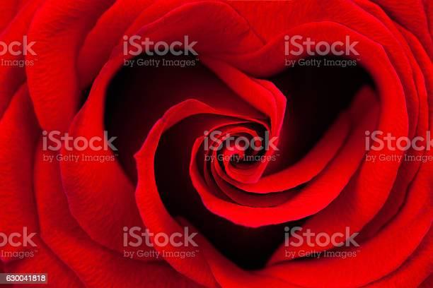 Red rose in the shape of a heart picture id630041818?b=1&k=6&m=630041818&s=612x612&h=rgsxos9rskij2r3q35azwuuspgrrjzt6dgr5vm2pcks=