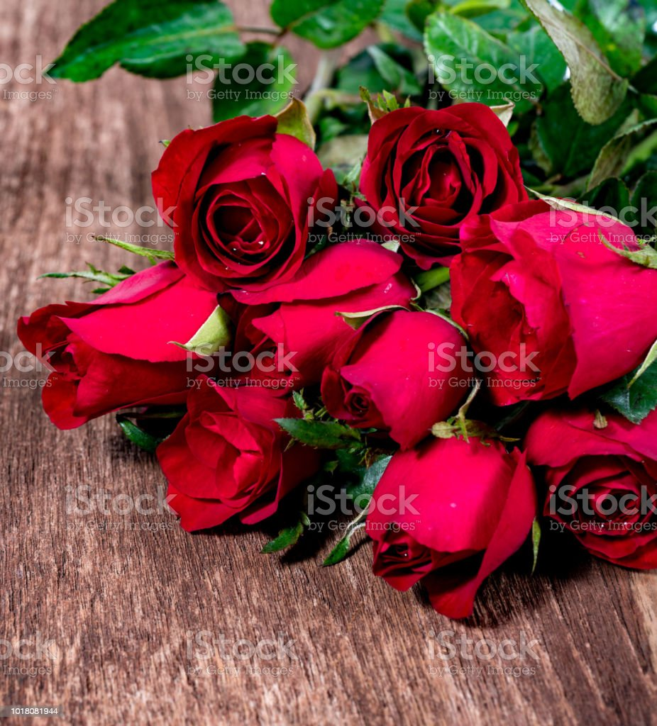 Red rose is beautiful flower for the meaning of love on valentines red rose is beautiful flower for the meaning of love on valentines day and can izmirmasajfo